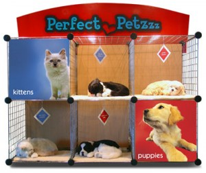 Perfect Petzzz Sales Kennel